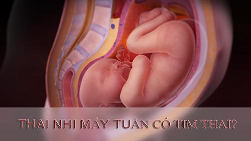 may-tuan-co-tim-thai