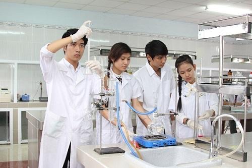 Làm việc nhóm là kỹ năng sinh viên Văn bằng 2 Cao đẳng Dược cần rèn luyện